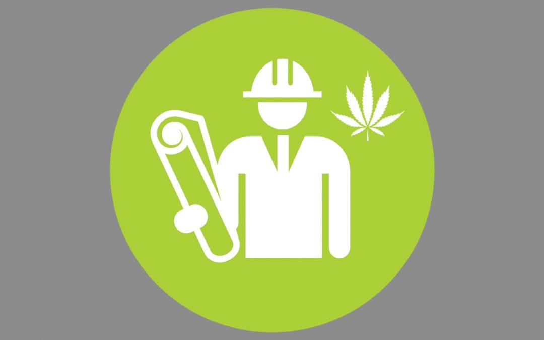Votre guide initial : Mode de réalisation design-build de votre projet cannabis