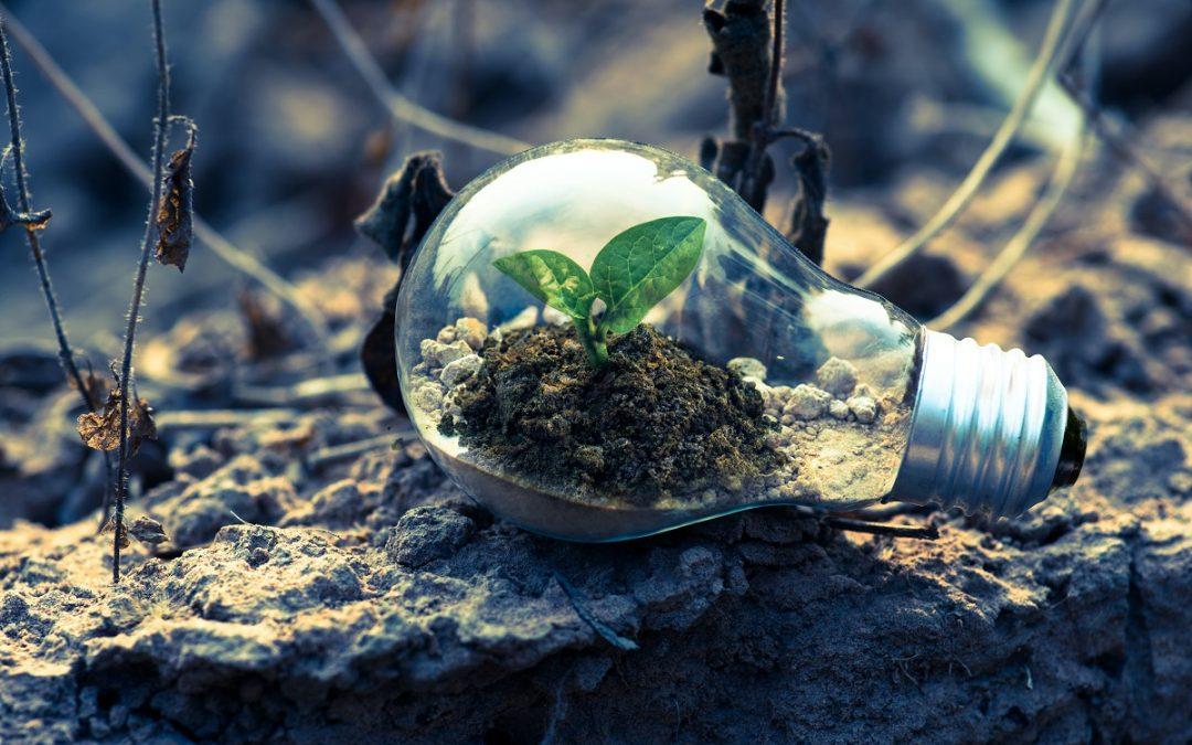 Efficacité énergétique: Une relève engagée